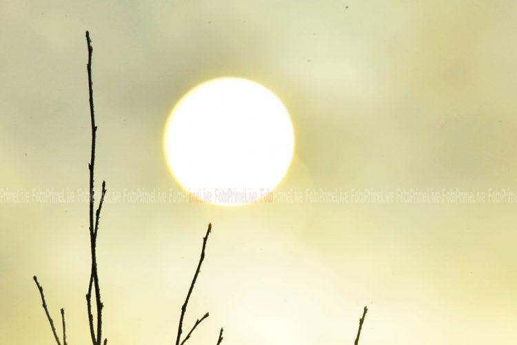 Солнечный диск